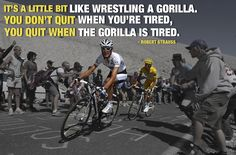 Exactly! If you wrestle that gorilla every day, you'll want to pin this.