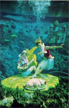 vintage florida postcard - Weeki Wachee springs (which is still in business today)