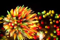 fireworklong09-640x428