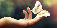 Amar es un sentimiento aliado con la eternidad cuando lo sentimos, mientras que querer es la intensidad del deseo...