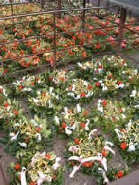 Tenbury Mistletoe and Holly Auction Herefordshire, Mistletoe, Darkness, Auction, Merry, Wreaths, Book, Plants, Door Wreaths