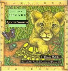 One Small Square - African Savanna
