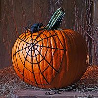Spiderweb Pumpkin:  1. Press brads into side of pumpkin to make a spiral design.  2. Tie yarn to center brad and wrap around outer brad; knot and cut excess.  Repeat for each brad on the outer ring of the spiral, resembling a pie chart.  3. Tie yarn around the center brad and weave it around the spiral design; knot.  4. Attach plastic spider on top with glue.
