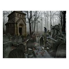 Sleepy Hollow. Graveyard ❤ liked on Polyvore featuring backgrounds, other, pictures, phrase, quotes, saying and text