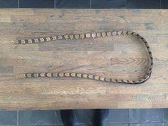 Bronze patterned belt. Birka grave. Bælte med bronzepynt. Fra birka grav 716.
