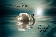Psalm 46:10 Be still, and know that I am God.