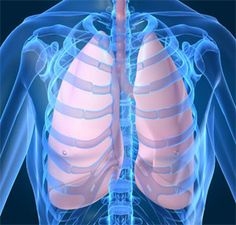 """Big Market Research adds a report """"Global Respiratory Disease Testing Market- Size, Share, Global Trends, Company Profiles, Demand, Insights, Analysis, Research, Report, Opportunities, Segmentation and Forecast 2019""""  Get Complete Report @ http://www.bigmarketresearch.com/global-respiratory-disease-testing-2015-2019-market"""