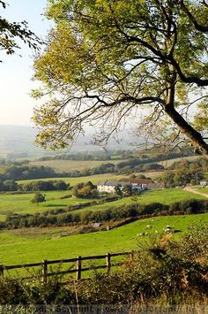 England Travel Inspiration - I am determined to go here someday! River Cottage Park Farm in Dorset, England - love Hugh Fearnley-Whittingstall!