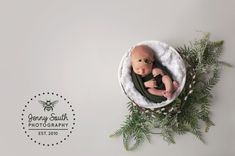 This tiny newborn bundle was just a dream to photograph in the studio this week. We incorporated Willow branches into her newborn session as a special nod to her name. Newborn Poses, Newborn Shoot, Newborn Twins, Newborns, Christmas Mini Sessions, Baby Christmas Gifts, Children Photography, Newborn Photography, Photography Props