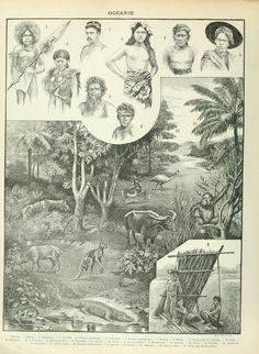 1897 Oceania Australia New Zealand People Animals Antique Map Print Larousse Free Download, Natural History, Worlds Largest, New Zealand, Vintage World Maps, Australia, Art Prints, Antiques, Nature