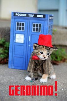 Geronimo! Kitty as The Doctor Doctor Who (the Eleventh!)