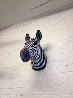 Image of Faux Taxidermy Zebra Head