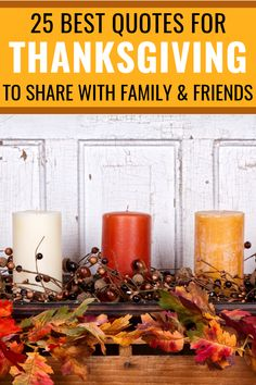 25 Thanksgiving Quotes To Share With Family And Friends #thanksgiving #thanksgivingquotes #happythanksgiving #thankfulquotes #gratitudequotes