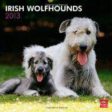 Irish Wolfhounds 2013 Square 12X12 Wall Calendar (Multilingual Edition)