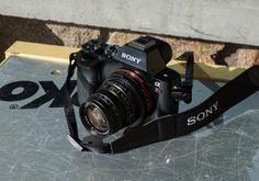 Sony a7r + Leica Summicron-M 50mm