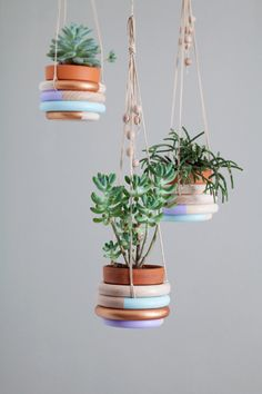 DIY colored plant hangers. Learn how to do it here: http://www.dentelleetfleurs.com/7-super-cute-easy-home-diy