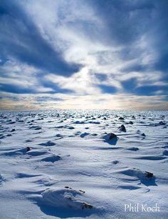 A Winter Field | Flickr - Photo Sharing!