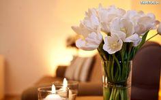 Bukiet, Białe, Tulipany, Świeczki
