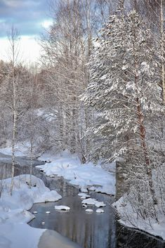 Finnish winter Winter Landscape, Landscape Photos, Winter Snow, Winter Time, Easy Jet, Painting Snow, Winter Scenery, Snow Scenes, Winter Beauty