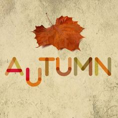 Fontfabric: sei font gratuiti!! FREE  Qui: http://www.bloggokin.it/2013/01/24/fontfabric-free-font/