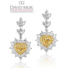 setarediamondsGorgeous pair of yellow diamond earrings!