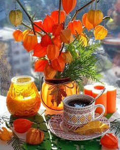 Coffee Gif, I Love Coffee, My Coffee, Good Morning Beautiful Pictures, Good Morning Flowers, Coffee Photography, Autumn Photography, Coffee Flower, Good Night Greetings