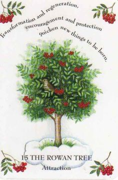 Rowan tree: MasculineMoon of Vision; Spirit Moon; Astral Travel MoonHealing; Personal Empowerment; Divination