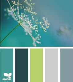 teal, lime green, grey