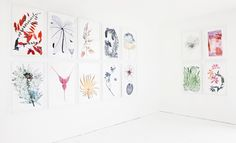 Nick Knight's Flora photography exhibition
