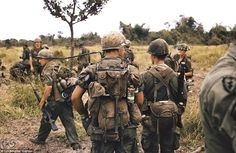 Sgt. Z's Favorites  173rd Airborne troopers before a sweep in July 1967.