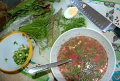 Botwinka - Polish soup made of young beets+leaves. Topped with hard boiled egg, green onions, and dill weed. Traditionally made in the spring and summer time. Can be served cold with extra sour cream.