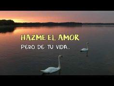 NO TE CANSES DE MI ♥♥ Pensamientos de Amor para Dedicar y Enamorar - YouTube