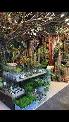 Bang thy er en stemningsfyldt butik der åbnede i dec. Indoor Garden, Indoor Plants, Outdoor Gardens, Hanging Plants, Garden Cafe, Garden Shop, Garden Nursery, Plant Nursery, Flower Shop Interiors