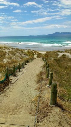 Mangawhai Heads, northland, New Zealand North Island New Zealand, New Zealand Beach, South Island, Oh The Places You'll Go, Great Places, Beautiful Places, Places To Visit, Chatham Islands, Living In New Zealand