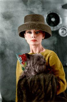 https://flic.kr/p/j4kBE1 | Audrey Hepburn | from my tumblr blog