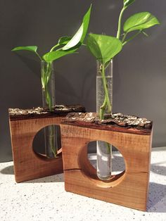 Plant Lover Gift One of a kind propagation station. Handmade in Minneapolis, Minnesota with live edge cherry wood. A perfect gift for plant lovers! House Plants Decor, Plant Decor, Wood Crafts, Diy And Crafts, Wood Vase, Deco Design, Woodworking Crafts, Woodworking Bench, Gift For Lover