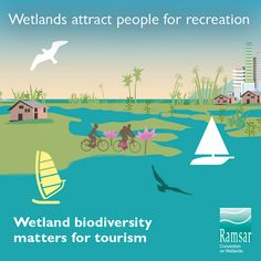 Home - WorldWetlandsDay Attraction, Tourism, Turismo, Travel