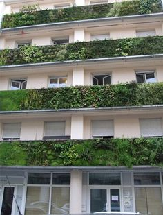 Vertical balcony gardens by Patrick Blanc. Patric Blanc is a botanist and the modern innovator of the 'green wall'