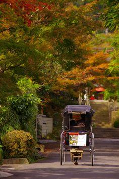 Kamakura Japan Countryside, Japanese Wagashi, Kanagawa Prefecture, Japanese Tea Ceremony, Kamakura, Visit Japan, Buddhist Temple, Japanese Beauty, Okinawa
