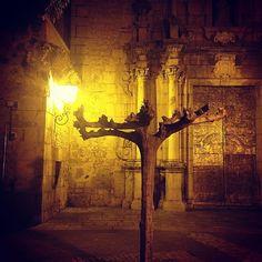Jérica #jerica #night #noche #travel #spirit