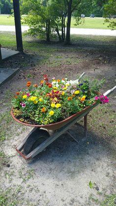 Old wheelbarrow 2016