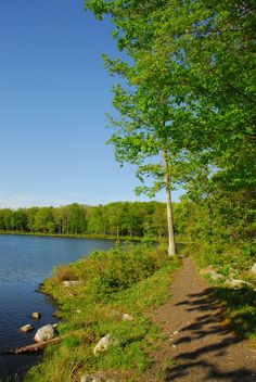 Sawmill Lake Campground at High Point offers rustic camping, with beautiful views of the Kittatinny Ridge.