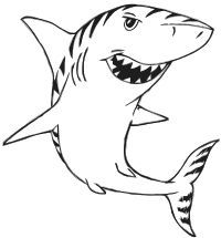 shark drawing - Google Search