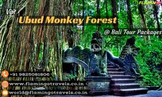 Enjoy Culture with Nature at Bali, a treat for the soul Holiday Destinations, Travel Destinations, Monkey Forest Bali, Bali Tour Packages, Ubud, Thailand, Surfing, Tours, Culture