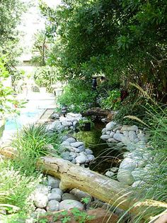 sublime pondless waterfall accented with driftwood