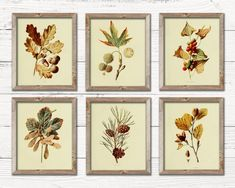 Vintage Inspired Decor for Any Home by TheBarnyardMarket on Etsy Hallway Decorating, Entryway Decor, Entryway Ideas, Decorating Ideas, Decor Crafts, Art Decor, The Barnyard, House Front Design, Vintage Fall