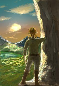 The Legend of Zelda: Breath of the Wild - Link The Legend Of Zelda, Legend Of Zelda Memes, Legend Of Zelda Breath, Majora Mask, Zelda Tattoo, Comic, Images And Words, Link Zelda, Twilight Princess