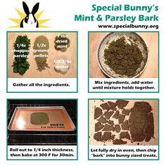 Treats for bunnies