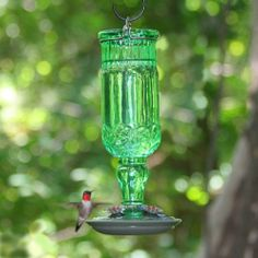 Stylish Hummingbird Feeder Green Glass Silver Accents Red Feeding Port Easy Fill $38.95