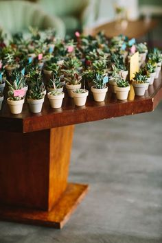 How to Naturally Incorporate Succulents into Your Wedding Decor